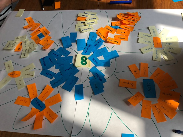 exemples de réalisation d'un atelier d'intelligence collective
