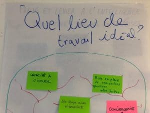 exemples de réalisation d'un atelier d'intelligence collective