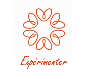 logo expérimenter de la charte graphique My Beautiful Value